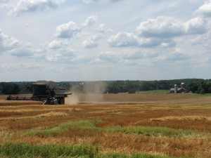 Here is a wheat combine.  Sue and I got to ride along for the early August wheat harvest on the farm of Karen and Joe Sablyak. Crawford County, PA.