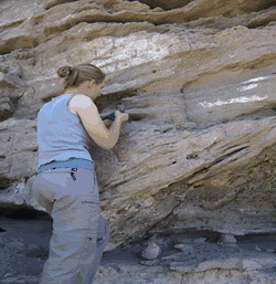 Summer 2005: Bekah Ost and Jesse Thompson Provenance of the basal fluvial conglomerate of the Tertiary Madison Valley Formation