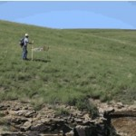 Summer 1999: Ann Widrig and Mary Beth Spinelli Sedimentology of the estuarine member of the Lower Cretaceous Kootenai Formation in the Missouri River Gorge