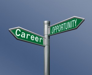 Career vs opportunity