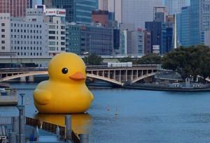 rubber-duck-giant_original