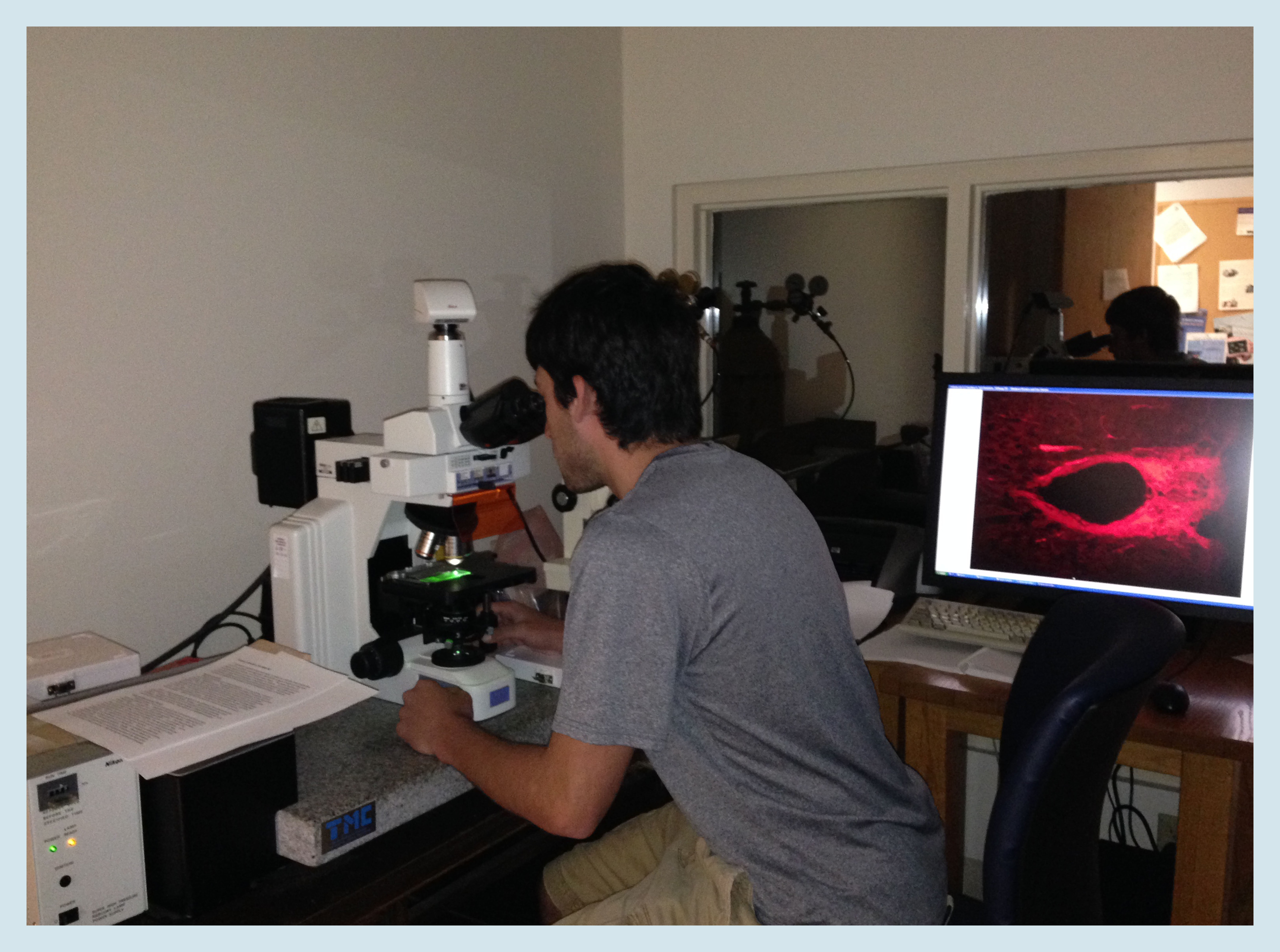 senior comp project psychology allegheny college meadville pa microscope1